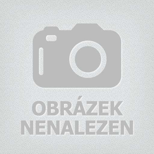 Hodinky Festina–Sport–Chrono Dual Time  16488-5